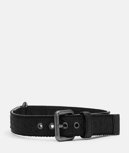Dog collar from liebeskind