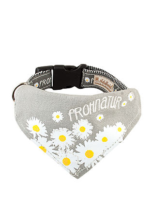 Hunde-Halsband mit Tuch 'Frohnatur'