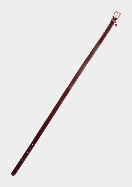 Echtledergürtel mit raffinierten Details