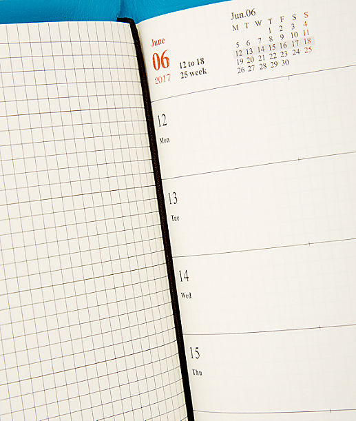 CalendarA 2017 weekly diary from liebeskind